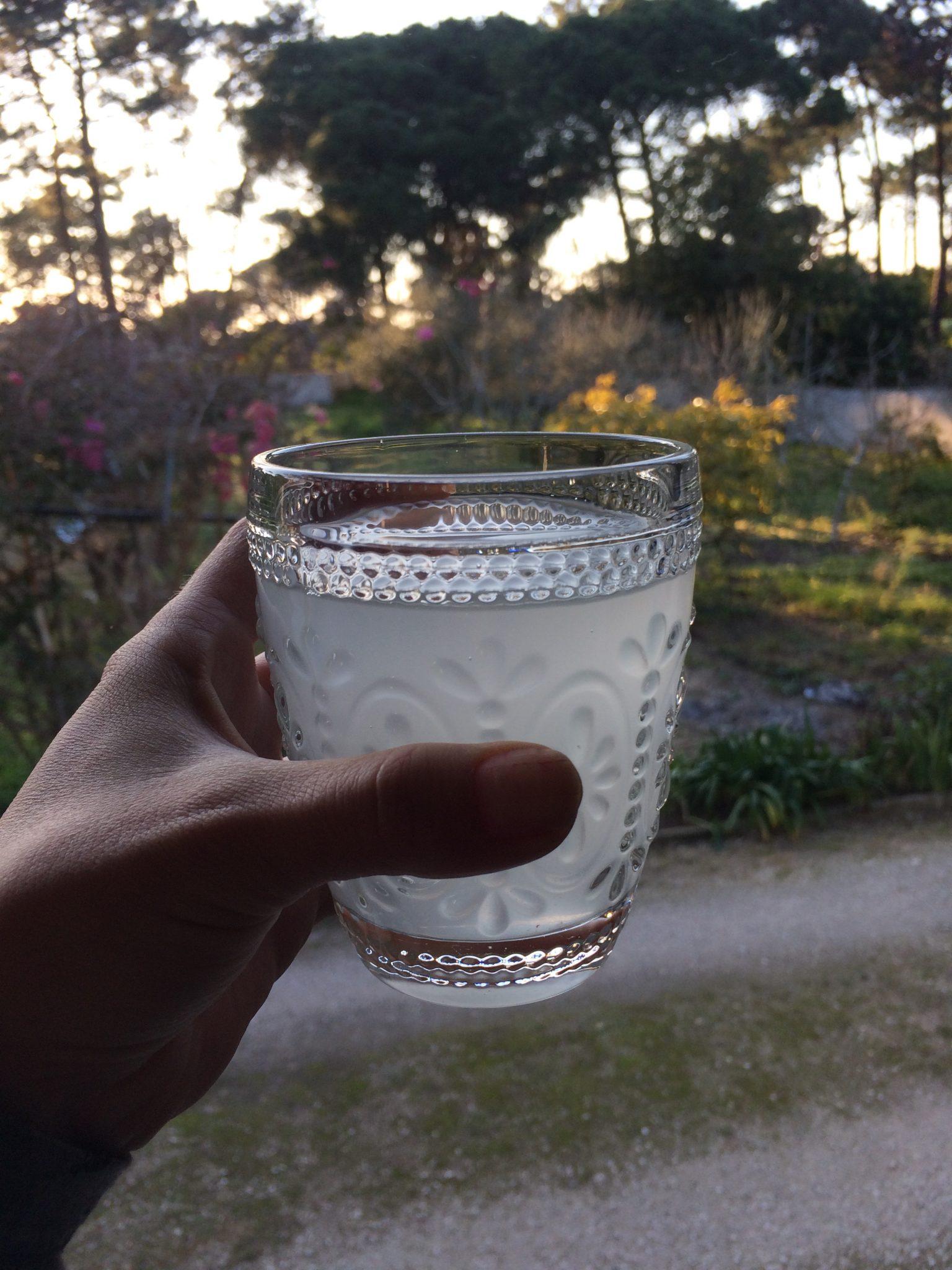 Rejuvelac: a bebida viva!