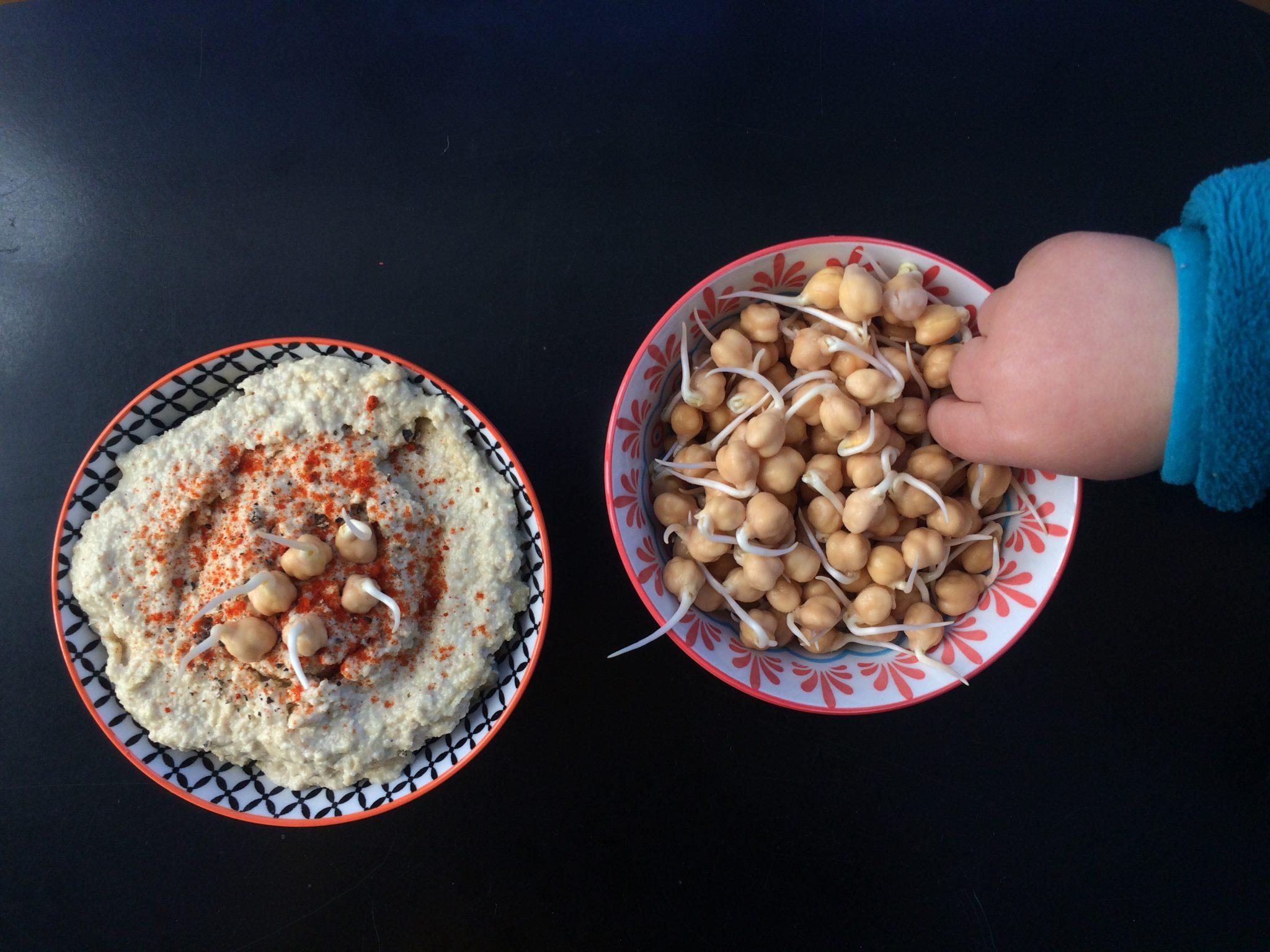 Hummus germinado (e os meus últimos tempos)